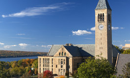 view of library & McGraw Tower on sunny day