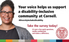 Disability Survey Email Banner