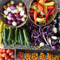 baskets of colorful vegetables: eggplants, peppers, tomatoes, zucchini