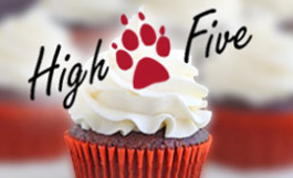 photo of yummy cupcake with High Five logo