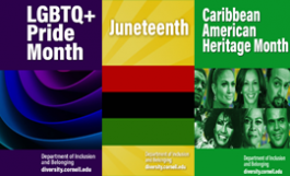 parts of Pride, Juneteenth, and Caribbean American Heritage zoom backgrounds, very colorful