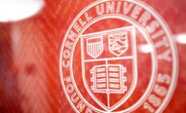 Cornell Logo on a shiny red wall