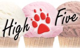 ice cream cones with the High Five logo