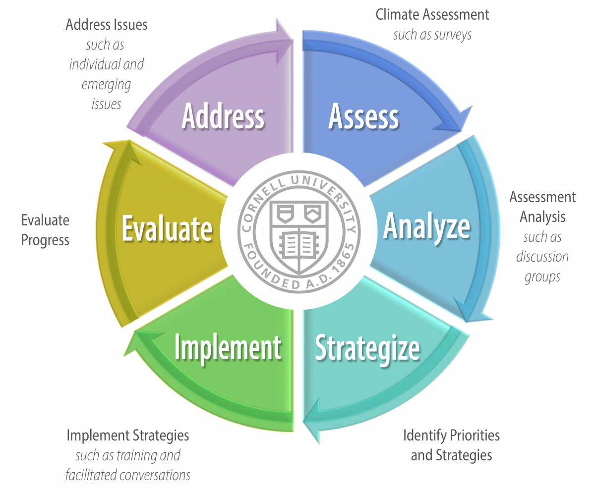 Graphic wheel shows stages of process: Assess, Analyze, Strategize, Implement, Evaluate, Address