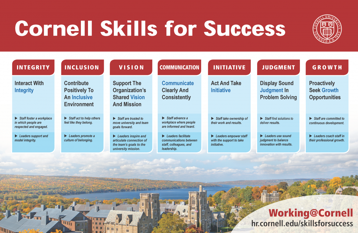 Skills for success graphic with five pillars: integrity, inclusion, vision, communication, initiation