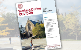 cover of Working During COVID-19 guide